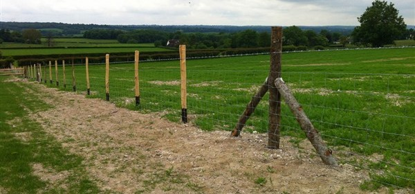 Stock Fencing / Netting